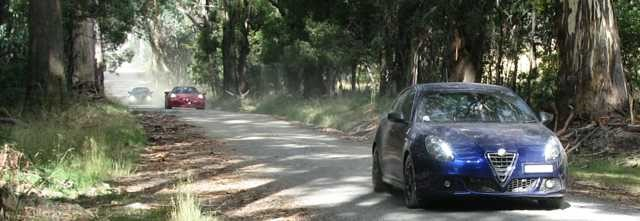 Alfas on a dusty road
